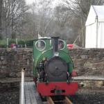 Green train engine